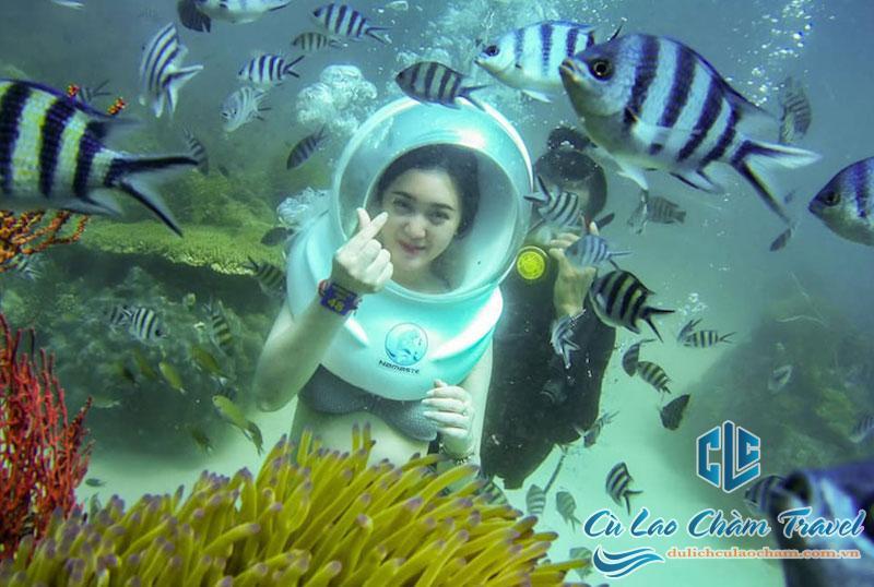 Tour Cù Lao Chàm đi bộ dưới đại dương